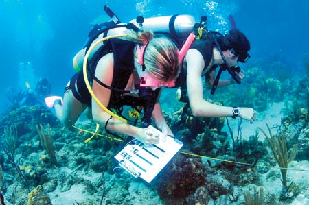 Marine biologist facts – Marine Biologist Job Description