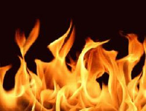 Kanchpur textile mill catches fire