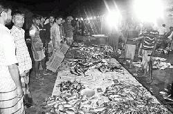 Biggest sweet water fish market in Barisal turns vibrant at midnight