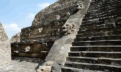 500 yrs later, scientists discover cause of a Mexico epidemic