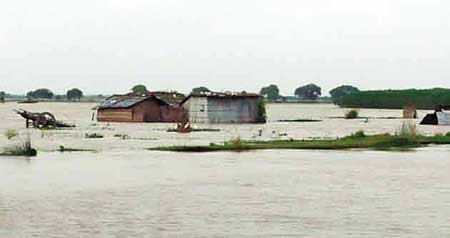 Char people panicked over Padma erosion