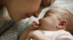 'Remarkable' global decline in fertility rates