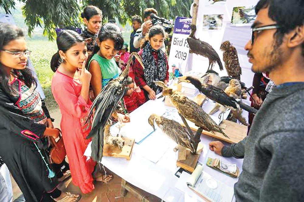 Children interested in bird watching at a stall at daylong Bird Fair on Jahangirnagar University campus on Friday.photo : courtesy