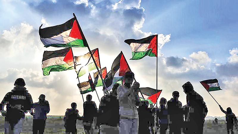 Reflections on the UN Inquiry Report on Palestine