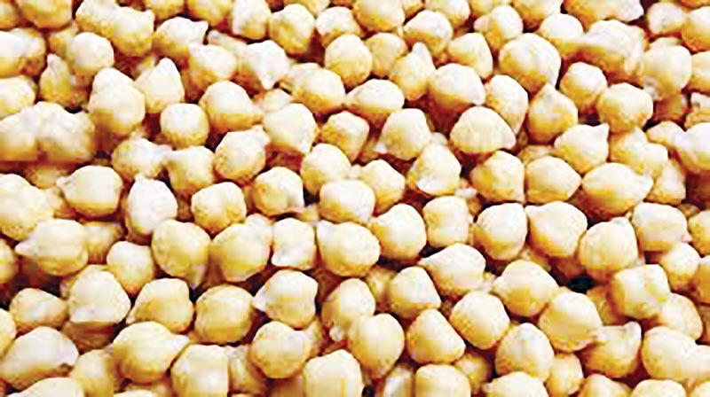 BD buys 0.22m tonnes of chickpea from Australia