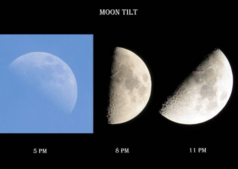 Moon is shrinking: Report