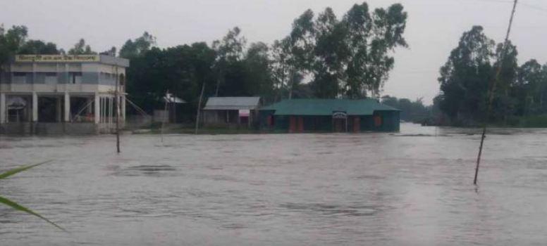 Jamuna flows above danger level in Jamalpur
