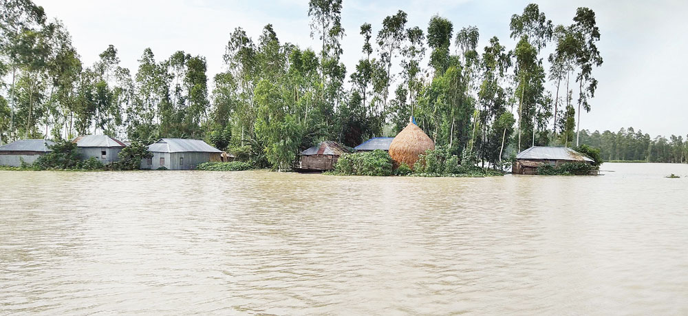 As the Brahmaputra River swelled Baburchar Village of Hatia Union in Ulipur of Kurigram went under water. The  picture was taken on Sunday.photo: Observer