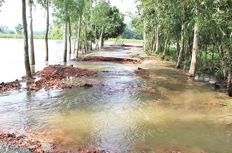Flood damages 400 km of roads in Bogura