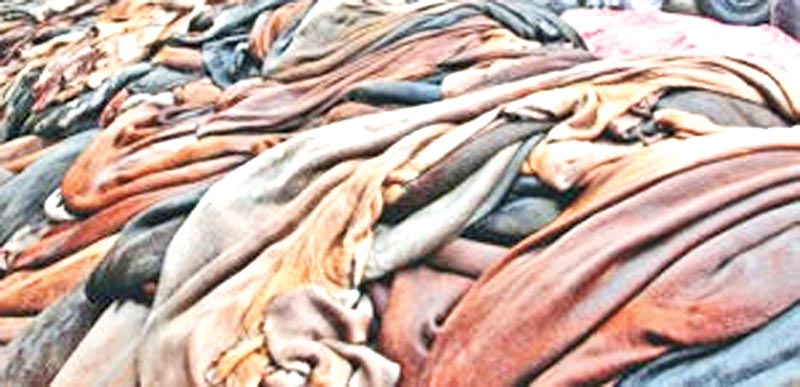 Tanners to start buying rawhide, oppose export