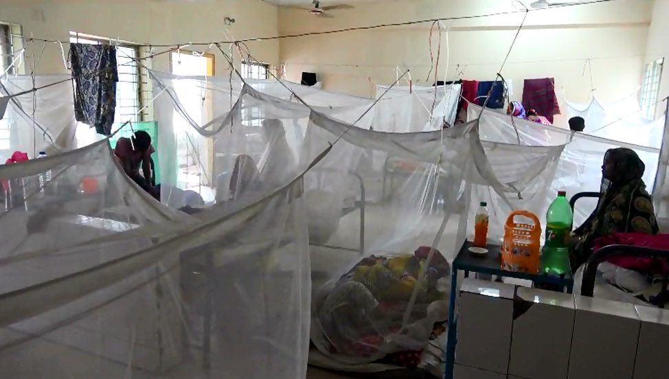 HC raises questions on dengue death toll