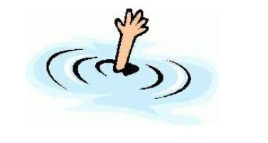 Minor drowns in pond