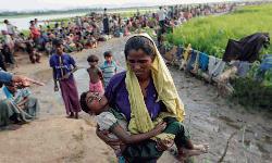 Should Rohingya refugees return to Myanmar?