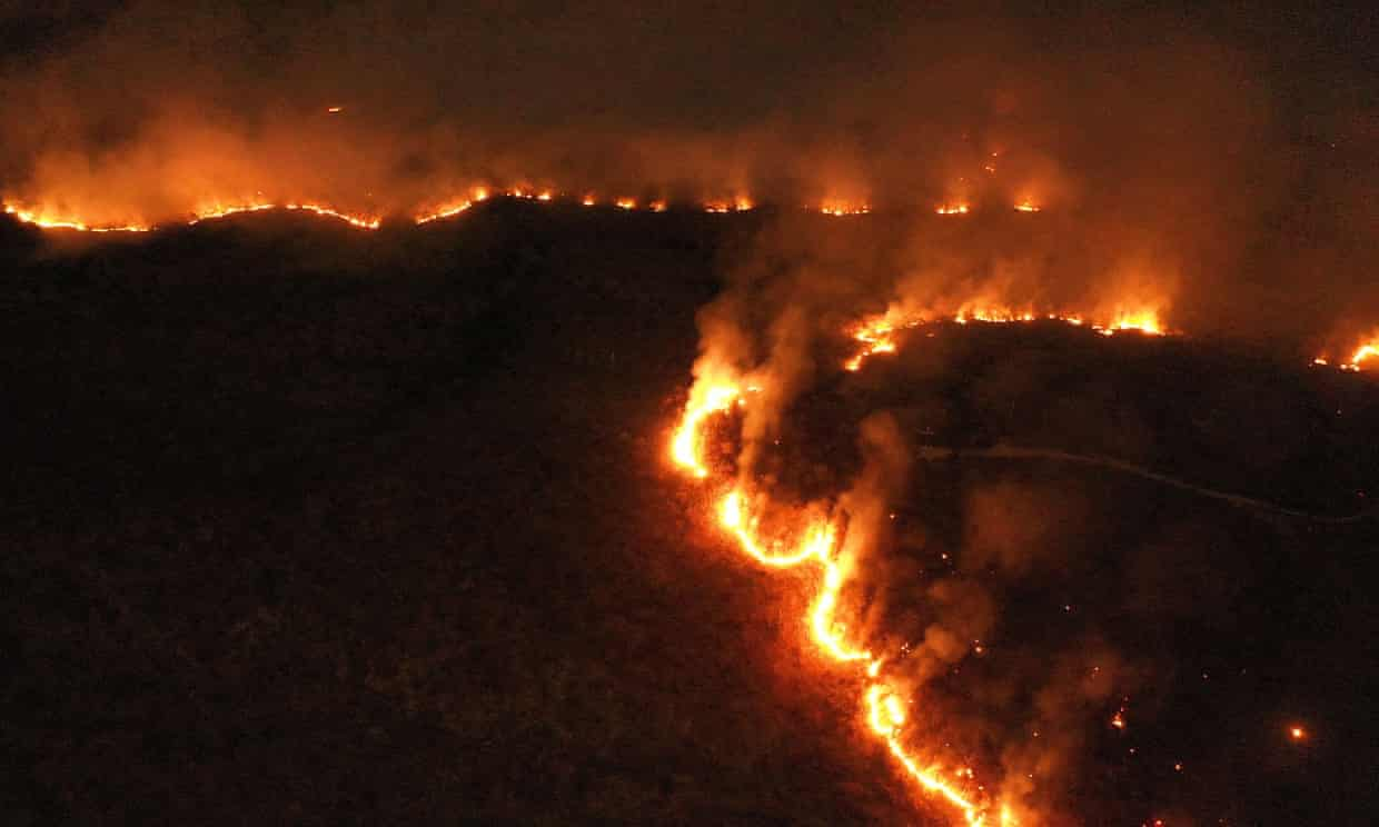 A raging fire in the Amazon rainforest in the state of Tocantins, Brazil. Photograph: Xinhua/Rex/Shutterstock