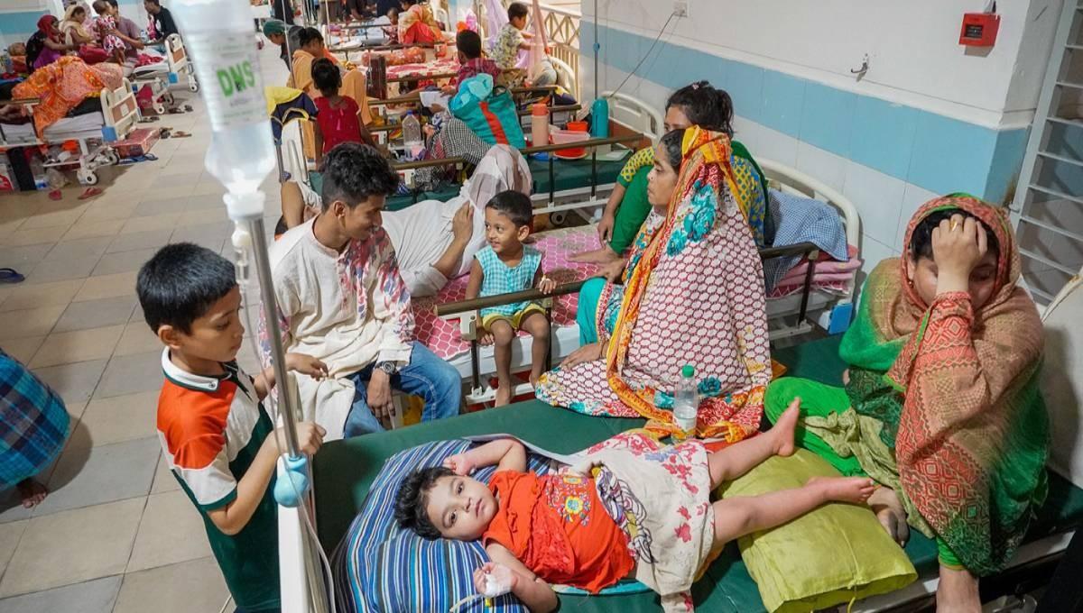 Woman dies of dengue in Kushtia