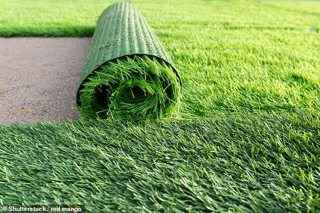 Conservationists slam gardeners for using artificial grass