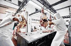 China green lights eight Argentine meat plants for beef exports