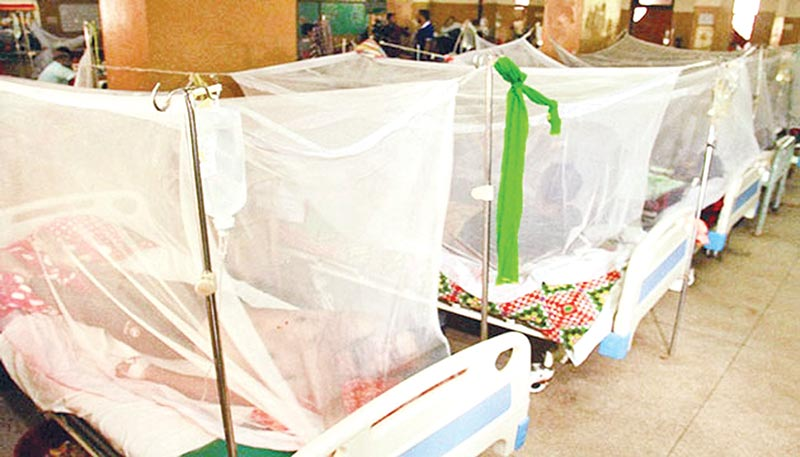 Dengue panic haunts Bagha people