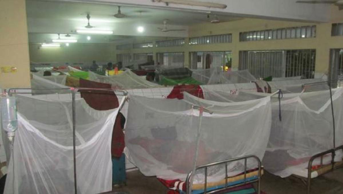 Housewife dies of dengue at KMCH