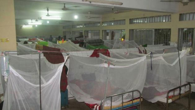 Two die of dengue, 267 more hospitalized