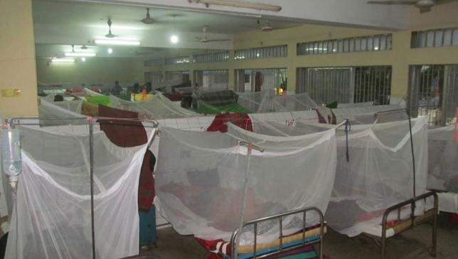 Govt confirms 98 dengue-related deaths