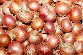 Govt flying in onion from Egypt, Turkey