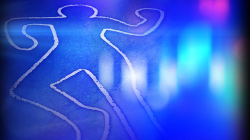 Newborn's body found in Barishal