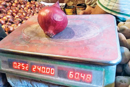 Price of an onion of Egyptian variety weighing 252 gram marked Tk 60 on November 15. 	file photo