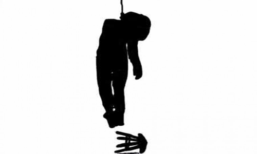 Housewife 'commits suicide'