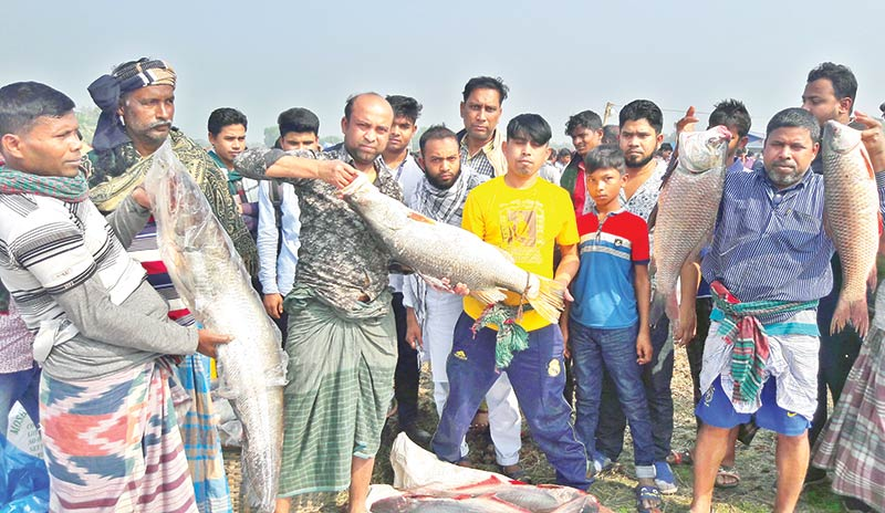 A fish fair is being organised for the last 250 years at Binirail Village under Kaliganj Upazila
