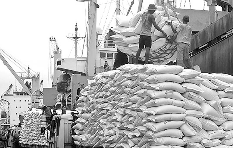 Rice bags are being loaded on a vessel for exports at Port of Bangkok Modern Terminal.