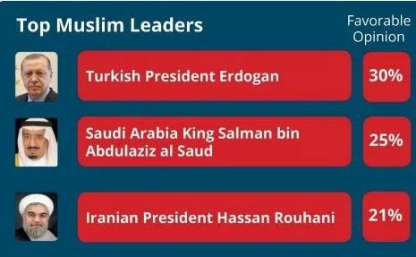 Erdogan world's most popular Muslim leader