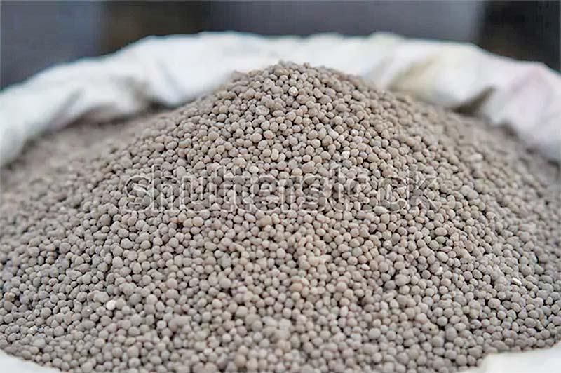 DAP fertilizer factory exceeds production target of FY20