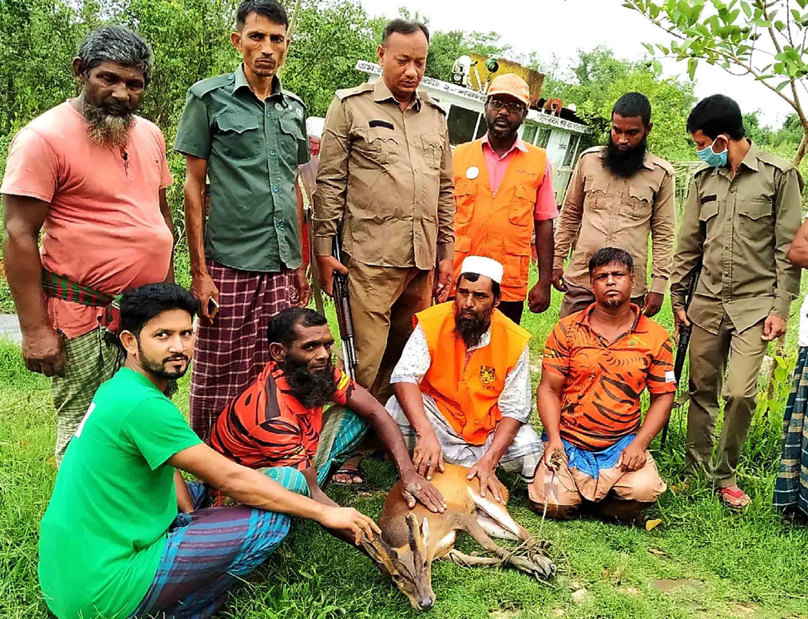 Deer rescued from village released in Sundarbans