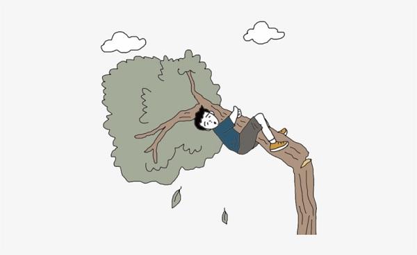 Schoolboy dies falling from mango tree in Jamalpur