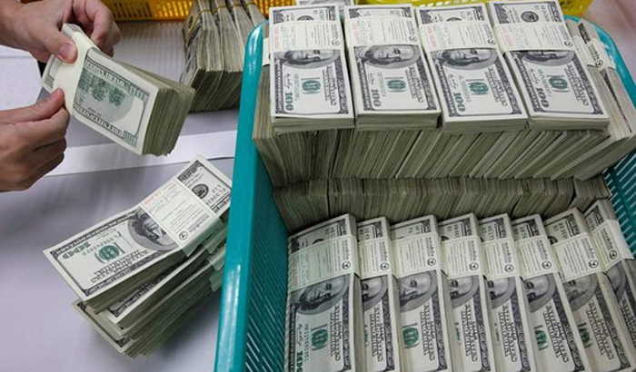 Forex reserves hit record high over $36 billion