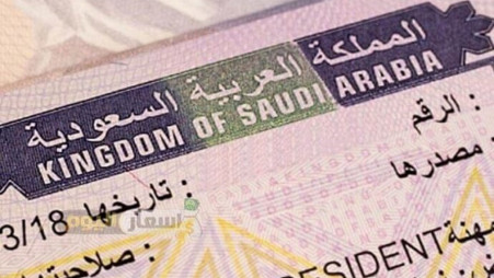 Saudi Arabia extends visas for expatriates for three months