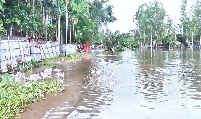 Flood victims suffer for lack of relief materials