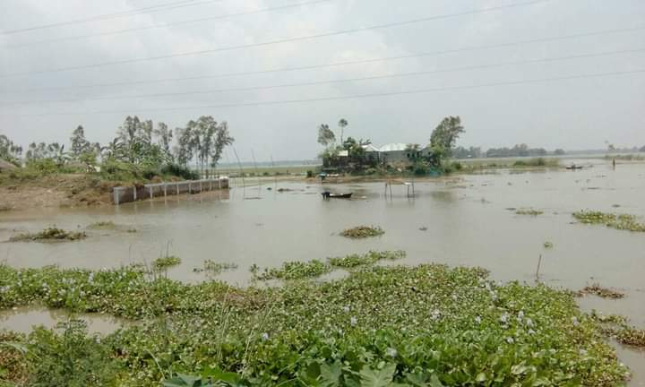 Jamuna water levels rise again, continue to increase in coming days