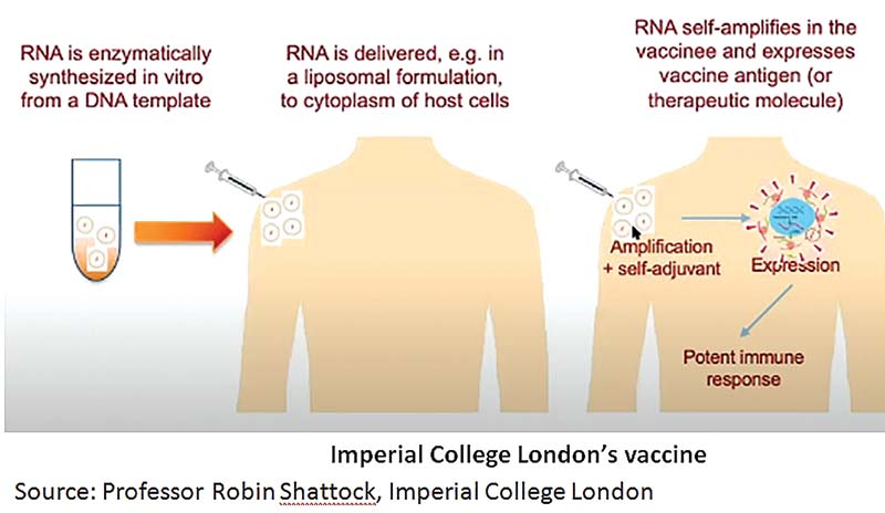 Covid-19 vaccine - how far is the UK's vaccine trial?