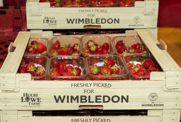 Strawberries from Wimbledon supplier Hugh Lowe Farms are delivered to the All England Club. Photo: AFP