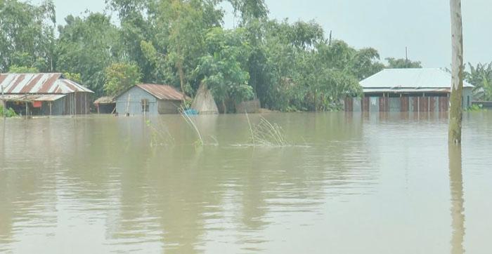 Bogura flood worsens as marooned people in dire need of cooked food