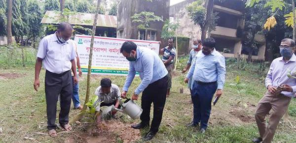 Sheikh Kamal's birth anniv observed in Thakurgaon