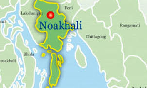 Youth held with 8 kgs hemp in Noakhali