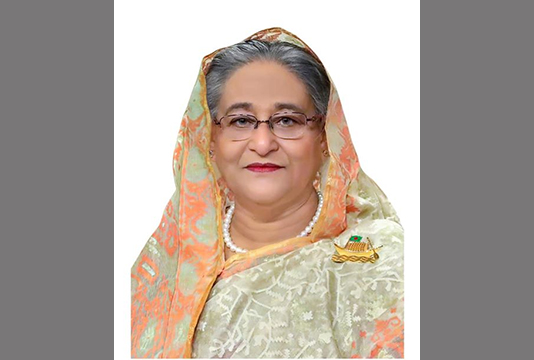 PM Hasina opens 100pc power coverage in 31 upazilas