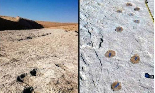 Earliest-known traces of humans on Arabian Peninsula unearthed