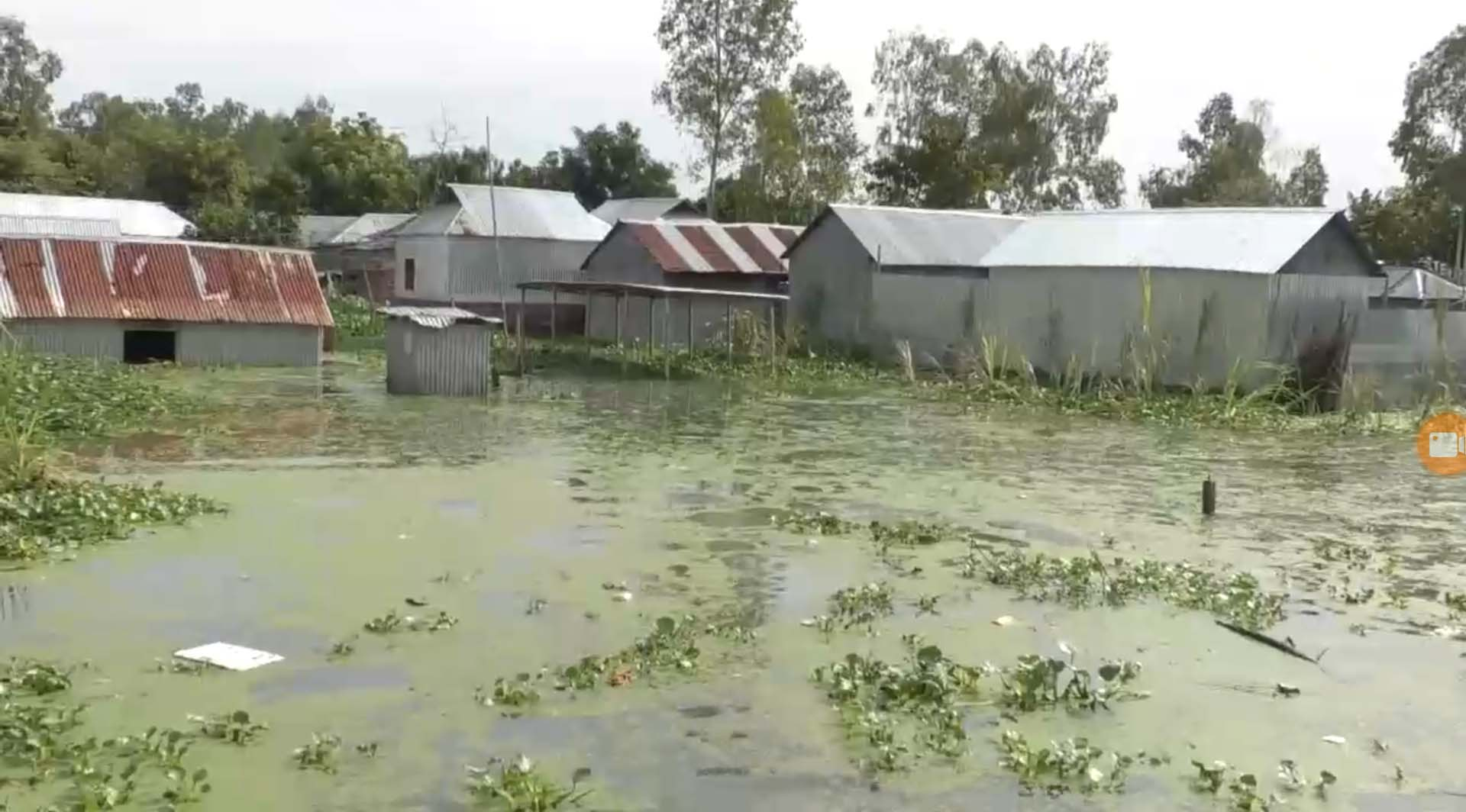 Sirajganj farmers in fear of crops damage as water rises
