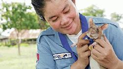 Landmine detection rat wins bravery award