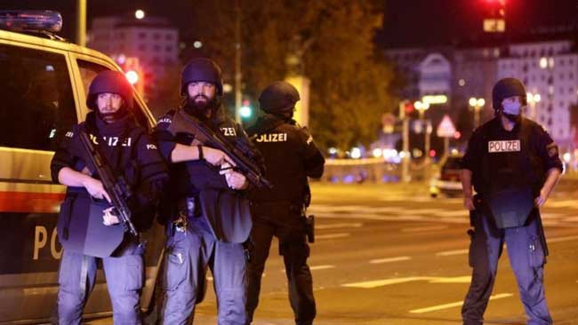 Two killed, several injured in Vienna terror attack