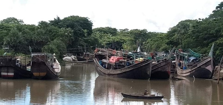 Fishermen ready to catch hilsa as ban ends midnight